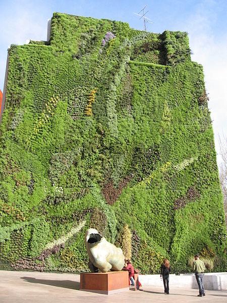 Il giardino verticale, bello, green e non solo.  SHINE!